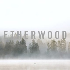 Producent Etherwood sprema treći album za Med School Music